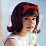 1960 hairstyles for long hair, short hair, medium length hair 01