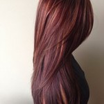 Pictures Of Dark Brown Hair With Burgundy Highlights 03