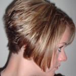 short wedge haircut photos back view 01