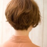 short wedge haircut photos back view 6