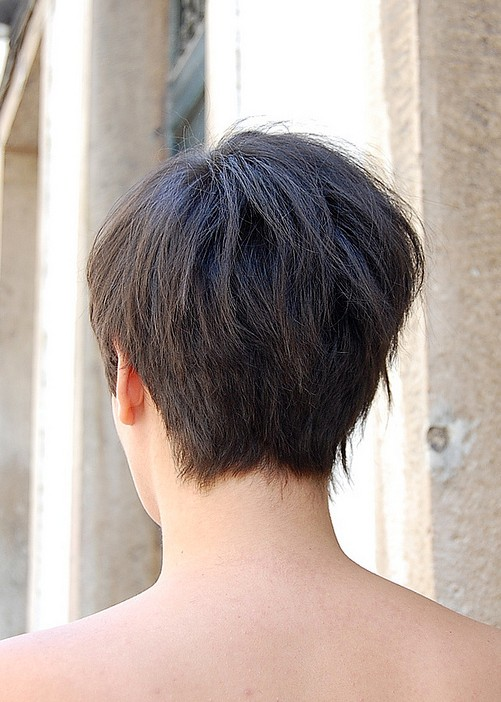 Short Wedge Haircut Photos Back View Pictures
