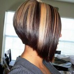 chunky blonde highlights on dark hair pictures 04