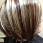 chunky blonde highlights on dark hair pictures 1