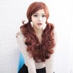 Korean double ponytail hairstyle