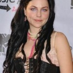 Amy Lee Long Hairstyle Natural Hair Color 2017